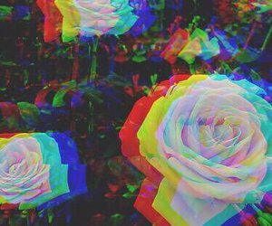 rose, grunge, and hipster image