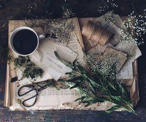 vintage, herbs, and scissors image