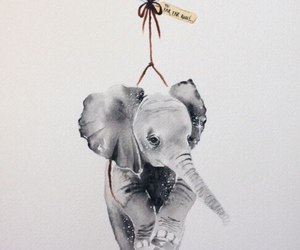 elephant, art, and balloon image