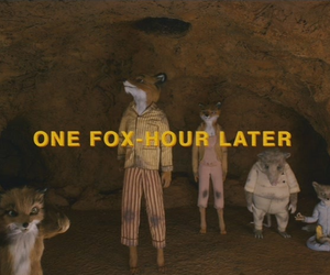 fantastic, fox, and fantastic mr fox image