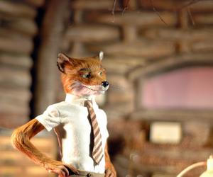 fantastic, fox, and Mr Fox image