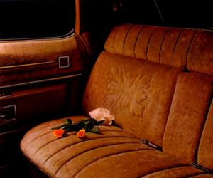 car, orange, and rose image