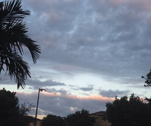 clouds, palm trees, and photography image