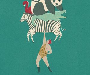 animal, illustration, and panda image