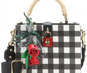 bag, D&G, and Dolce & Gabbana image