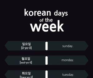 korean, language, and korea image