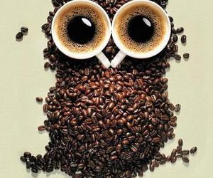 owl and coffee image