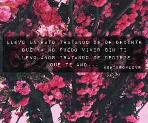 leon larregui, te amo, and amor image