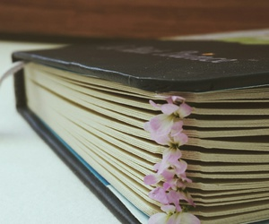 flower, notebook, and sketchpad image