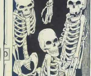 skeleton, skull, and closet image