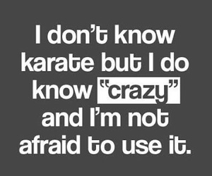 crazy, funny, and karate image