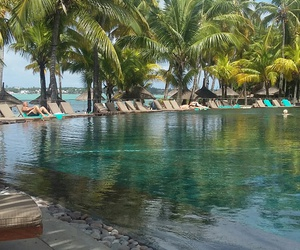 mauritius, pool, and palms image