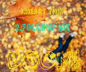 follow, heart, and me image