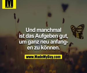 motivation, made my day, and spruch image