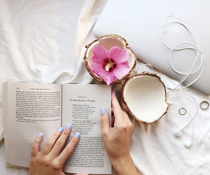 book and coconut image