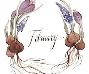 february, season, and winter image