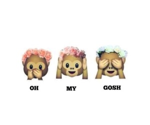 emoji, monkey, and OMG image