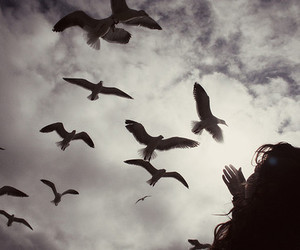 birds, girl, and sky image