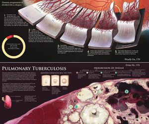 art, medicine, and science image