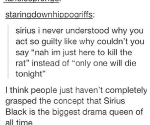 harry potter, sirius black, and funny image