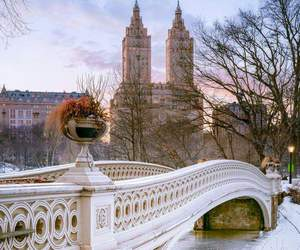 Central Park, nyc, and travel image