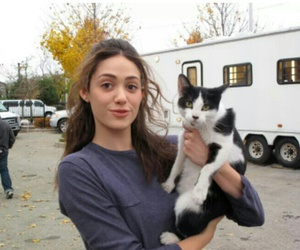 shameless, emmy rossum, and cat image