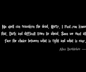 albus dumbledore, book, and harry potter image