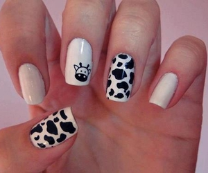 nails, cow, and white image