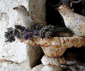 birds, rustic, and flowers image