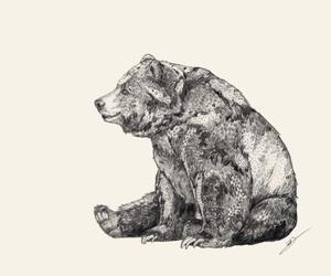 bear, art, and illustration image