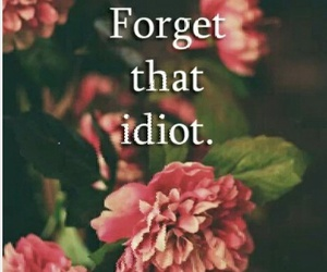 idiots, phrase, and wallpapers image