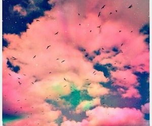 sky, wallpapers, and birds image