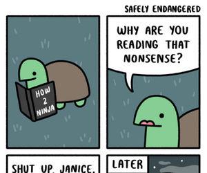 funny, ninja, and turtle image