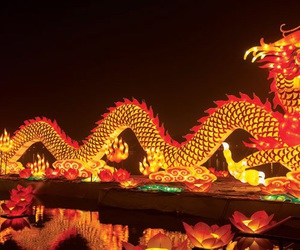 chinese new year, dragon, and holidays image