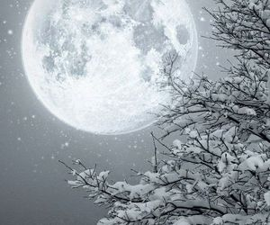 moon, winter, and snow image