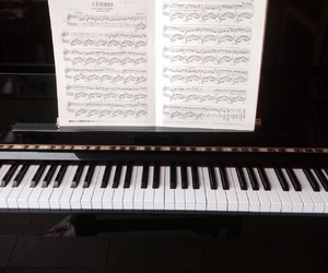 black, book, and chopin image