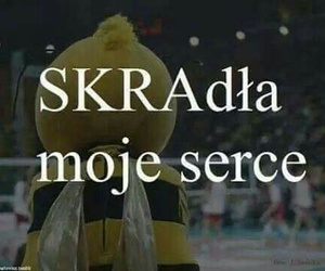 💛, skra, and pge image