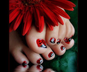 nails, red, and ladybug image
