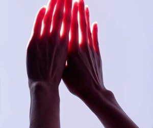 hands, z, and redlights image