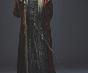 thranduil and the hobbit image