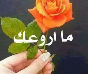حلوة, ما اروعك, and تعليقات image