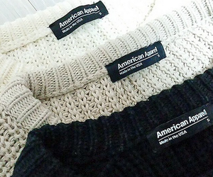 fashion, sweater, and american apparel image