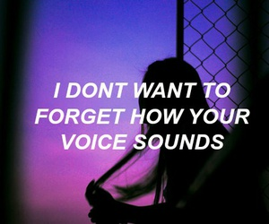 quotes, grunge, and voice image