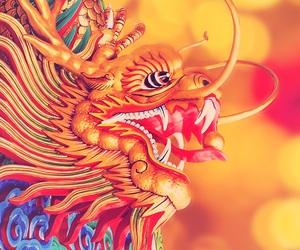 china, dragon, and drache image