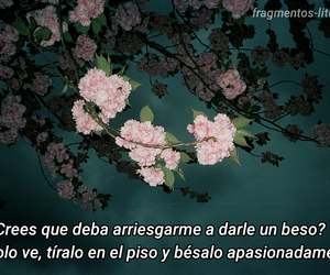 frases, love, and kiss image