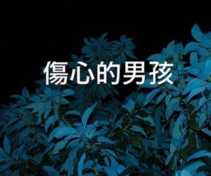 aesthetic, plant, and darkblue image