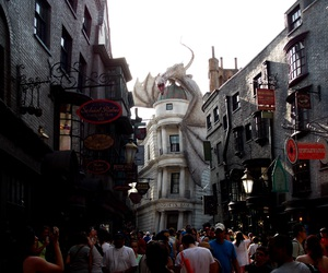 florida, happy, and harry potter image