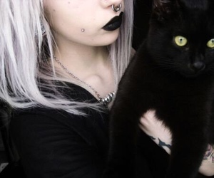 cat, piercing, and black image
