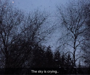 autumn, crying, and outside image