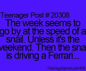 teenager post, funny, and snail image